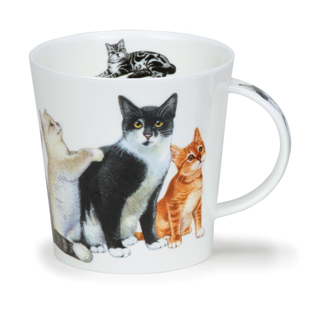 CAIRNGORM CATS & KITTENS BLACK & WHITE