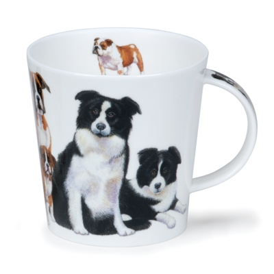 CAIR DOGS & PUPPIES COLLIE