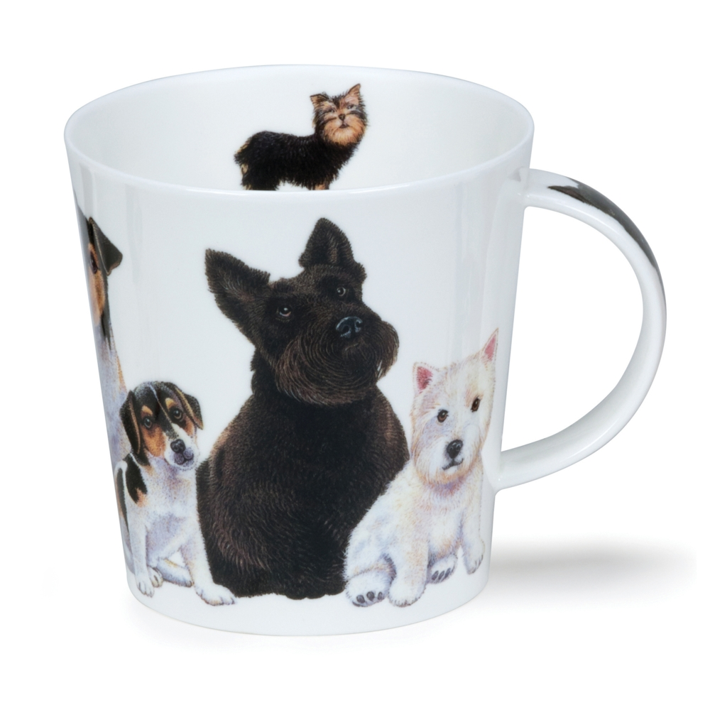 CAIRNGORM DOGS & PUPPIES SCOTTIE