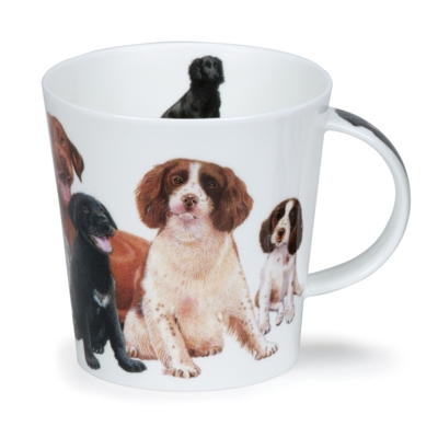 C/GORM DOGS & PUPPIES SPANIEL