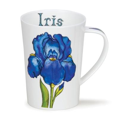 ARGYLL IRIS