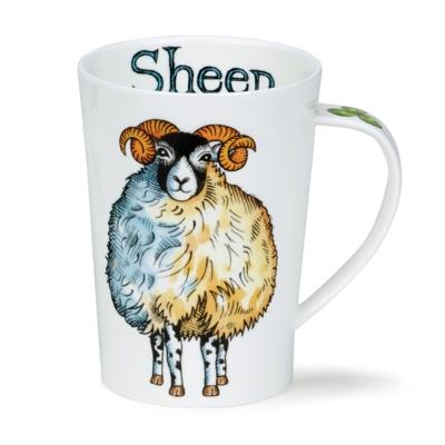 ARGYLL SHEEP