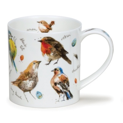 ORKNEY GARDEN BIRDS