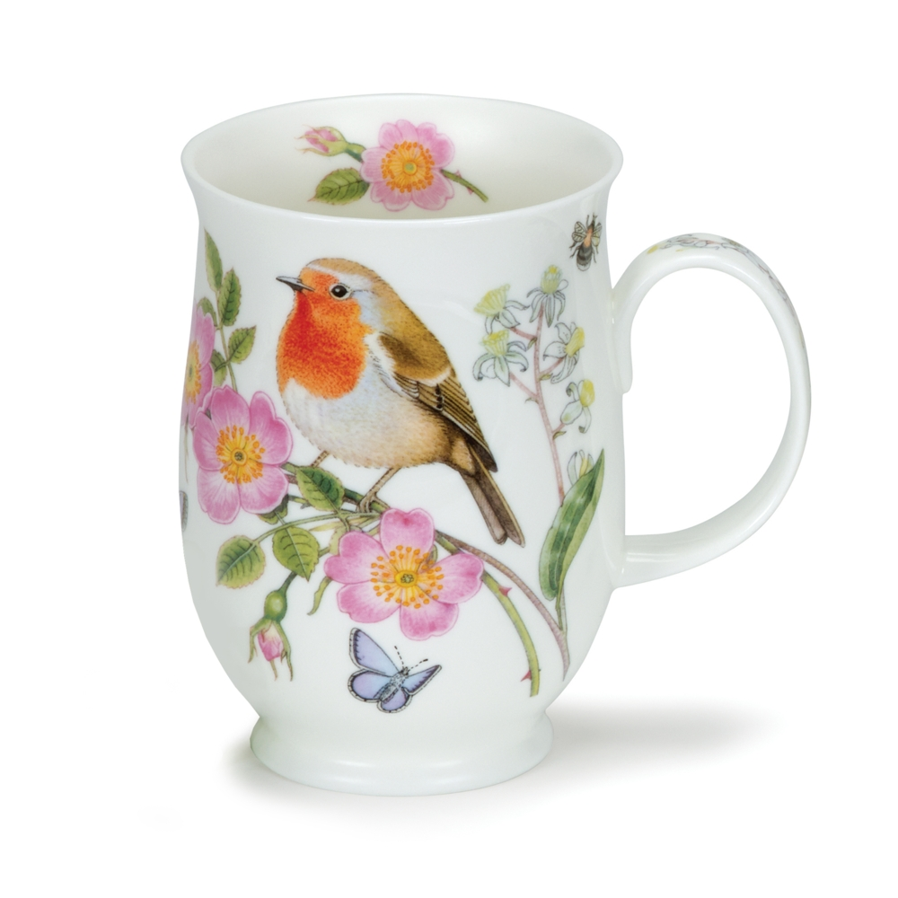 SUFF HEDGEROW BIRDS ROBIN