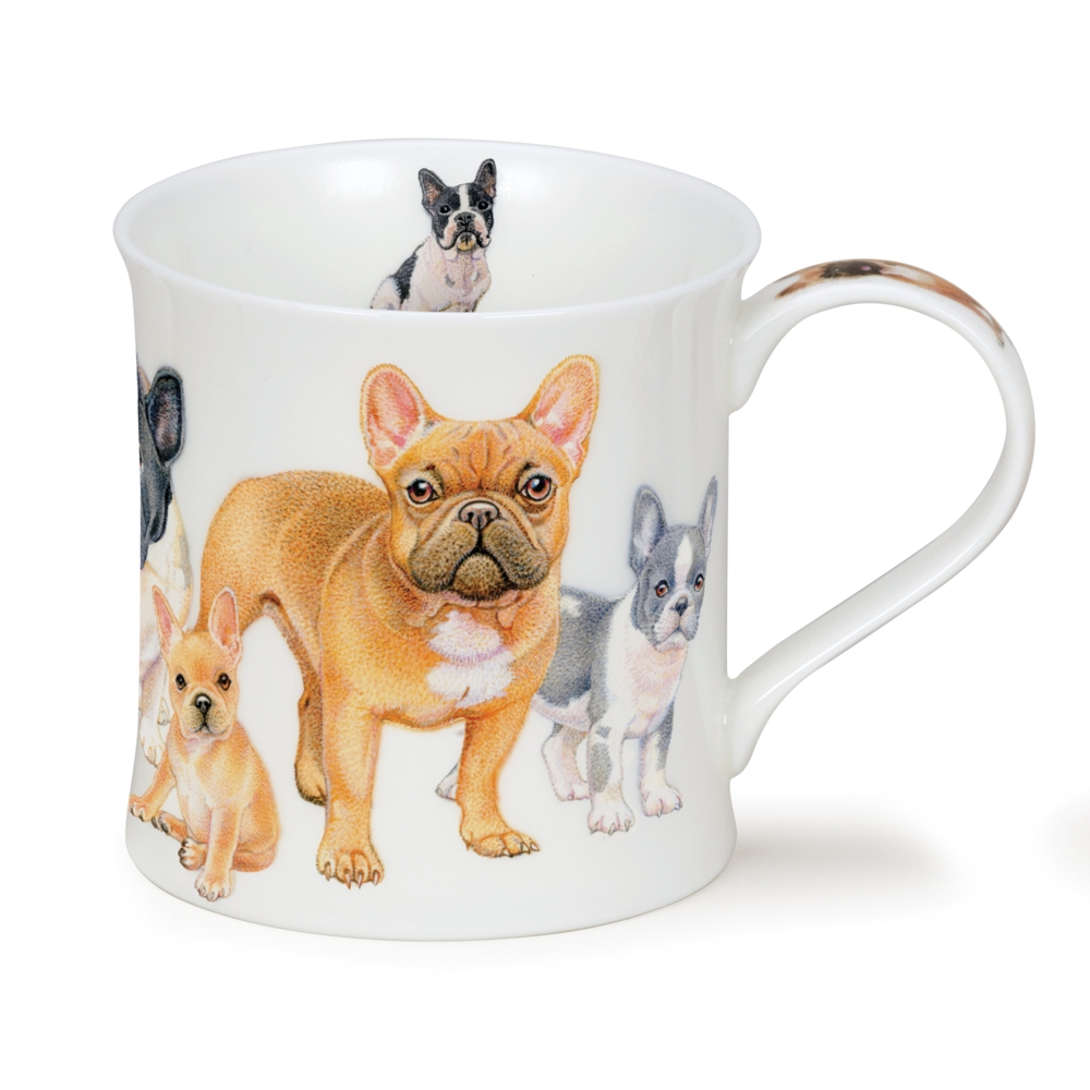 WESSEX DESIGNER DOGS FRENCH BULLDOGS