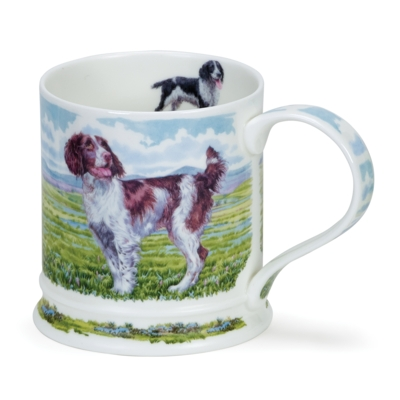 IONA COUNTRY DOGS SPRINGERS