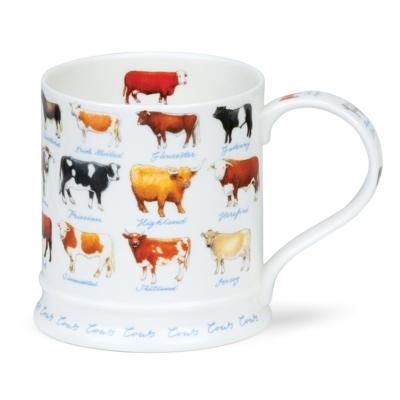 IONA FARM LIFE COWS