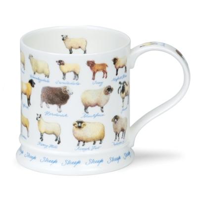 IONA FARM LIFE SHEEP