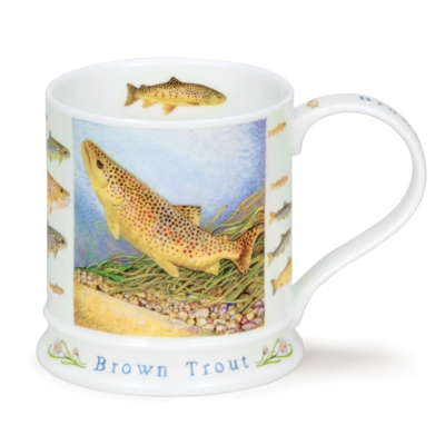 IONA WILDLIFE BROWN TROUT