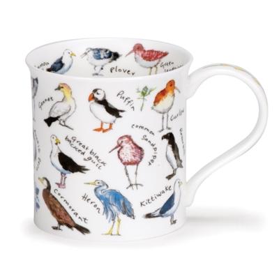 BUTE BIRDLIFE COASTAL BIRDS