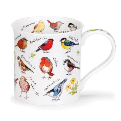 BUTE BIRDLIFE GARDEN BIRDS