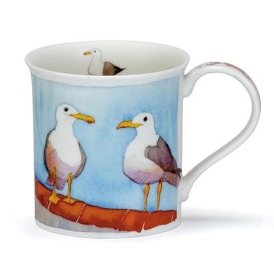 BUTE COASTAL BIRDS SEAGULL