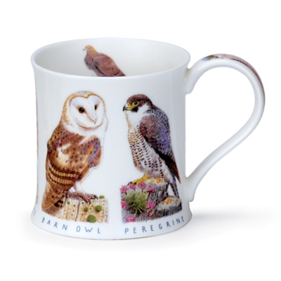 WESS C WILDLIFE OWL