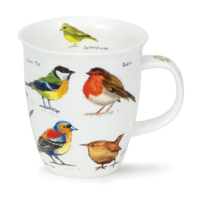 NEVIS GARDEN BIRDS