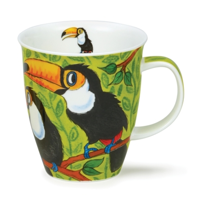 NEVIS TROPICAL BIRDS TOUCANS