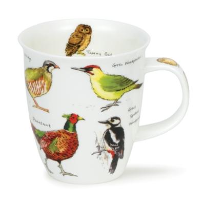 NEVIS WOODLAND BIRDS