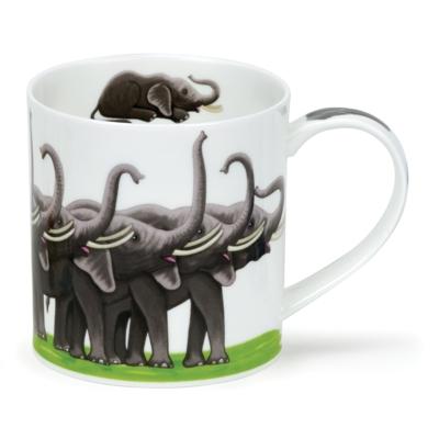 ORKNEY SHOW-OFFS ELEPHANTS