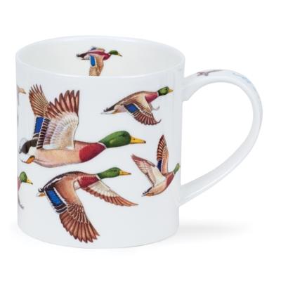 ORKNEY GAME BIRDS IN FLIGHT MALLARD