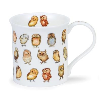 BUTE LITTLE CHICKS OWLS