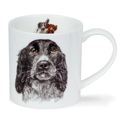 ORKNEY H.LONGMUIR DOG COLL COCKER SPANIEL