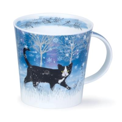 CAIR MOONBEAM CAT