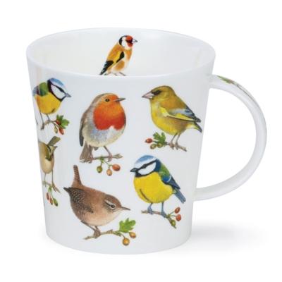 CAIR SONG BIRD BERRIES