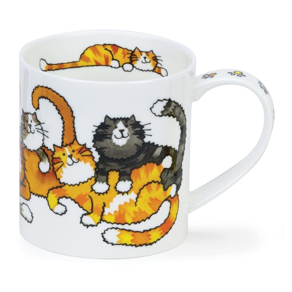 ORKNEY JUMBLED CATS