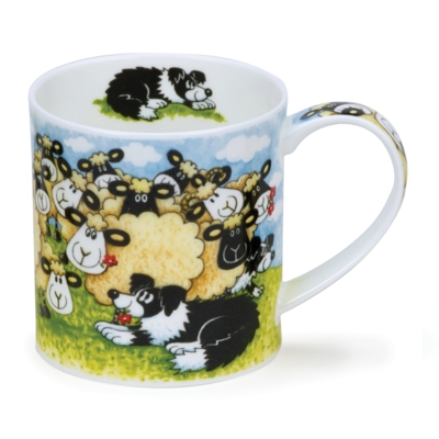 ORKNEY SILLY SHEEP FLOCK